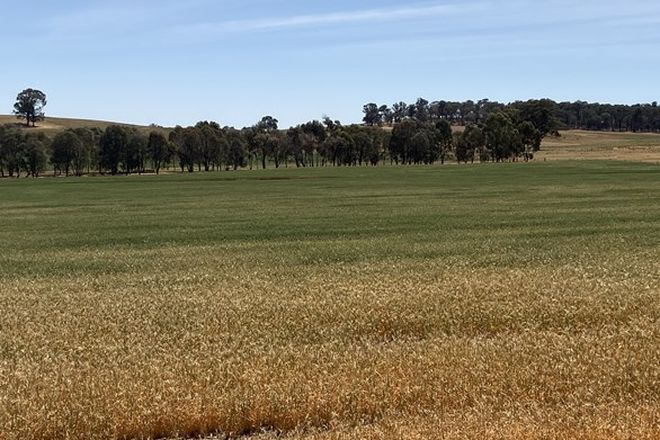 Picture of . Old Howlong Rd, CORNISHTOWN VIC 3683