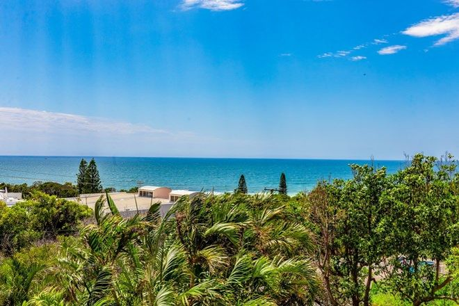 Picture of 1558 David Low Way, POINT ARKWRIGHT QLD 4573