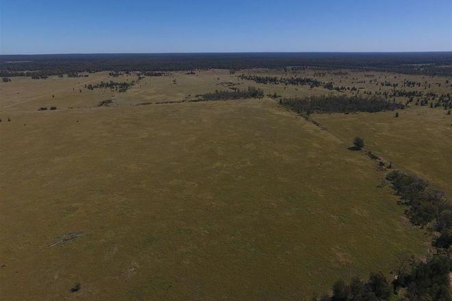 Picture of TARA QLD 4421