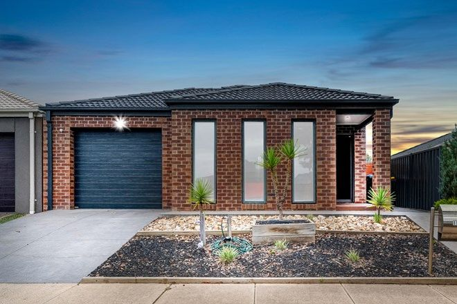 Picture of 15 Edenvale Street, MANOR LAKES VIC 3024