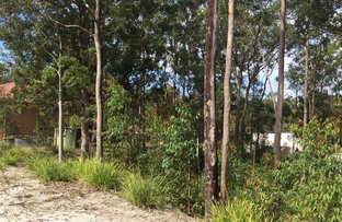 Picture of 61 Curlew Crescent, Nerong NSW 2423