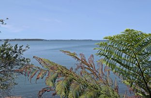 Picture of 12 The Esplanade, North Arm Cove NSW 2324