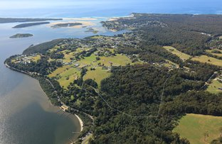 Picture of 79 Angophora Drive, Mallacoota VIC 3892