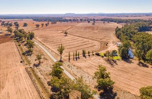 Picture of 4194 Lachlan Valley Way, Forbes NSW 2871
