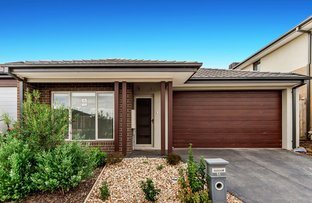 Picture of 14 Wilde Street, Fraser Rise VIC 3336