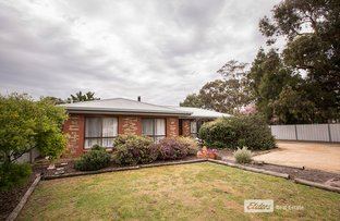 Picture of 15 FORDHAM AVENUE, Naracoorte SA 5271