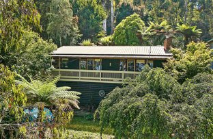 Picture of 183 Olinda-Monbulk Road, Monbulk VIC 3793
