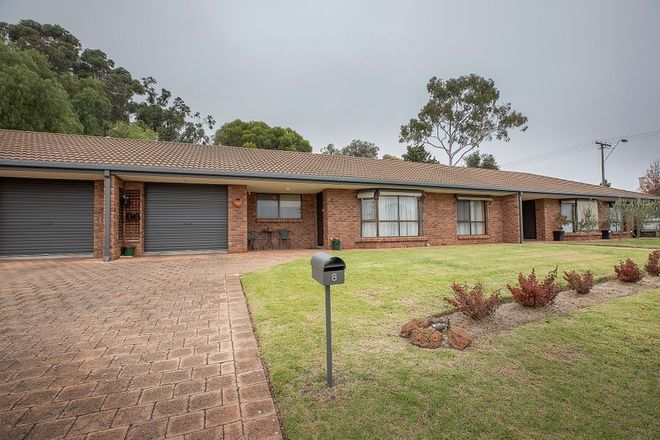 Picture of 8 Porter Street, NARACOORTE SA 5271