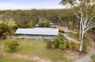 Picture of 33 Derrick Road, Wamuran QLD 4512