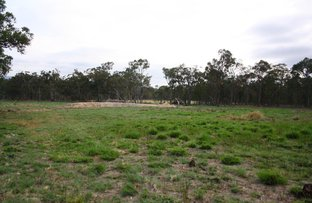 Lot 541 & Lot 542 Geyers Road, Tenterfield NSW 2372