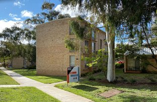 Picture of 13/143 Carruthers Street, Curtin ACT 2605