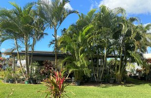 Picture of 22 Ridgway Court, Marian QLD 4753