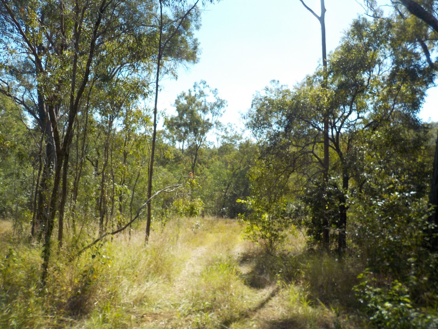 Mount Perry QLD 4671, Image 2