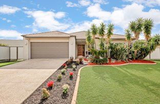 17 Central Lakes Drive, Caboolture QLD 4510