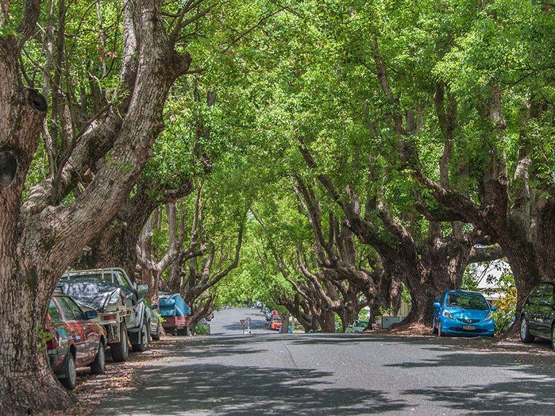 4/4 Abbott Street, New Farm QLD 4005, Image 1