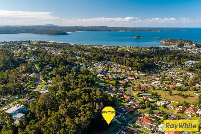 Picture of 12 Correa Place, CATALINA NSW 2536
