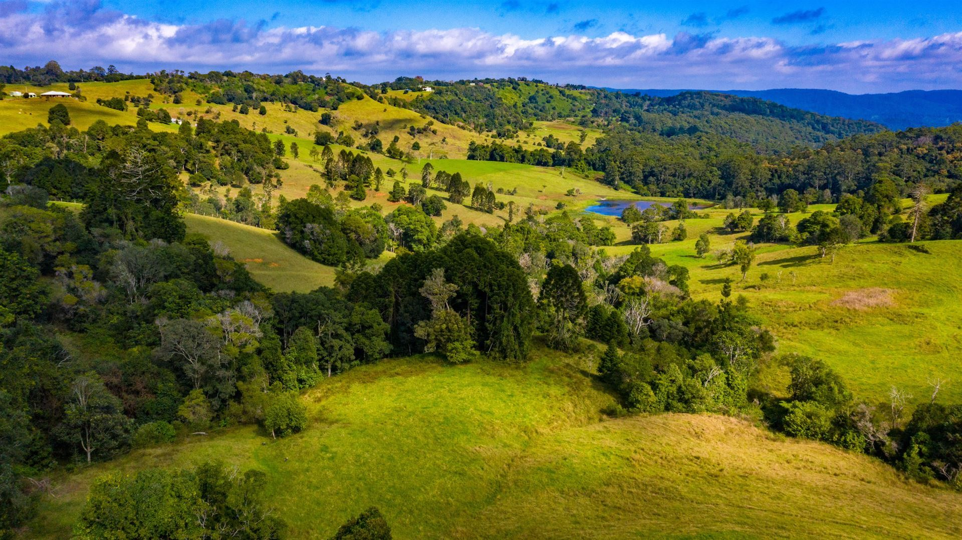 942 Maleny Stanley River Road, Booroobin QLD 4552, Image 1