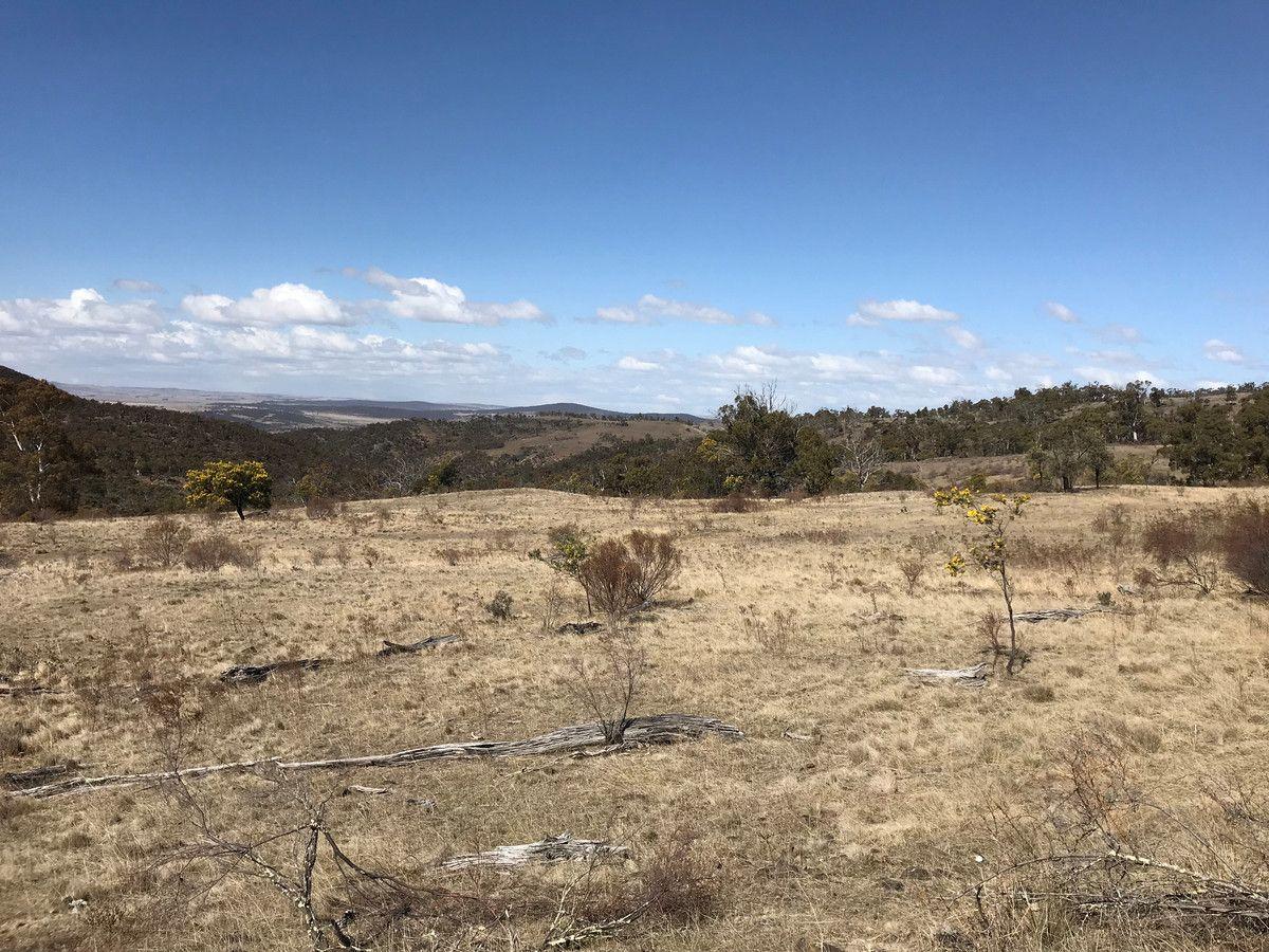 Dry Plains Road, Wambrook NSW 2630, Image 1