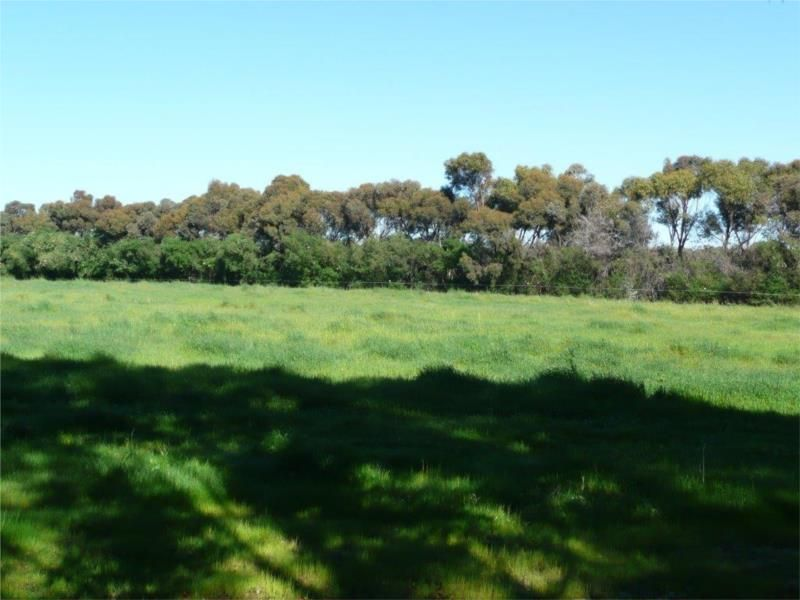 Lot 204 Chitty Road, Bakers Hill WA 6562, Image 2