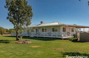 Picture of 63-71 Geoghegan Road, Roma QLD 4455