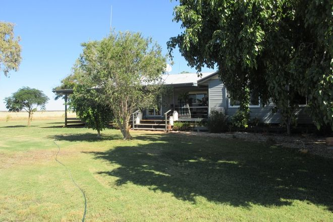 Picture of 3170 Barcaldine Aramac Road, BARCALDINE QLD 4725