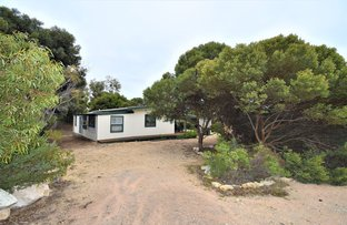 Picture of 13 Kestrel Court, Marion Bay SA 5575