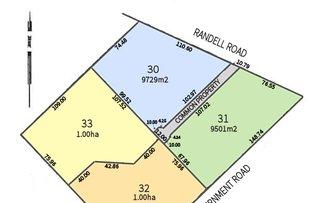 2998 Randell Road, Mannum SA 5238
