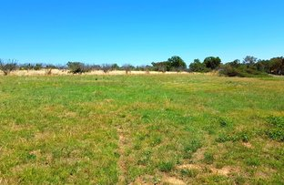 Picture of 51 Mccaffery Rd, Young NSW 2594