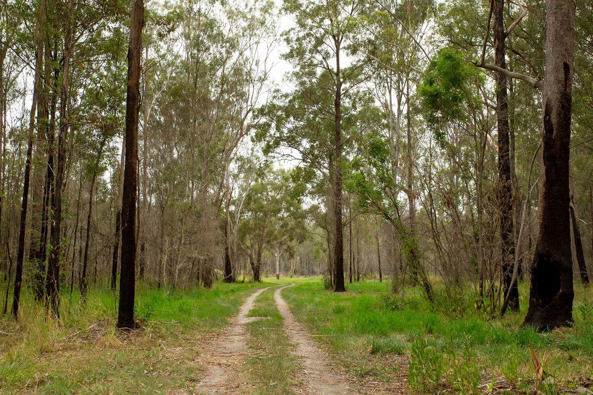 195 Pacific Highway, Mororo NSW 2469, Image 2