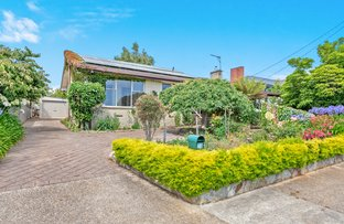 Picture of 28 Curraghmore Avenue, Park Grove TAS 7320