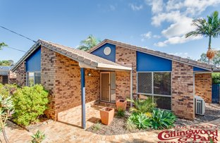 Picture of 12 Cathryn Court, Collingwood Park QLD 4301