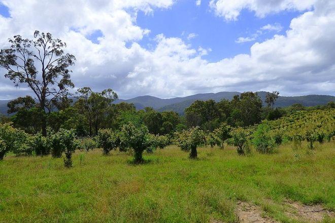 Picture of 116 Log Farm Rd, TOWAMBA NSW 2550