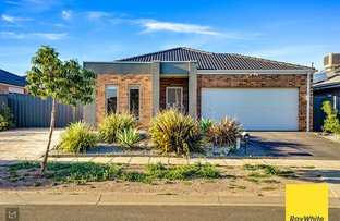 Picture of 10 GRANYA STREET, Tarneit VIC 3029