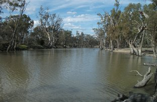 Picture of Lot 12 Line Road, Wakool NSW 2710