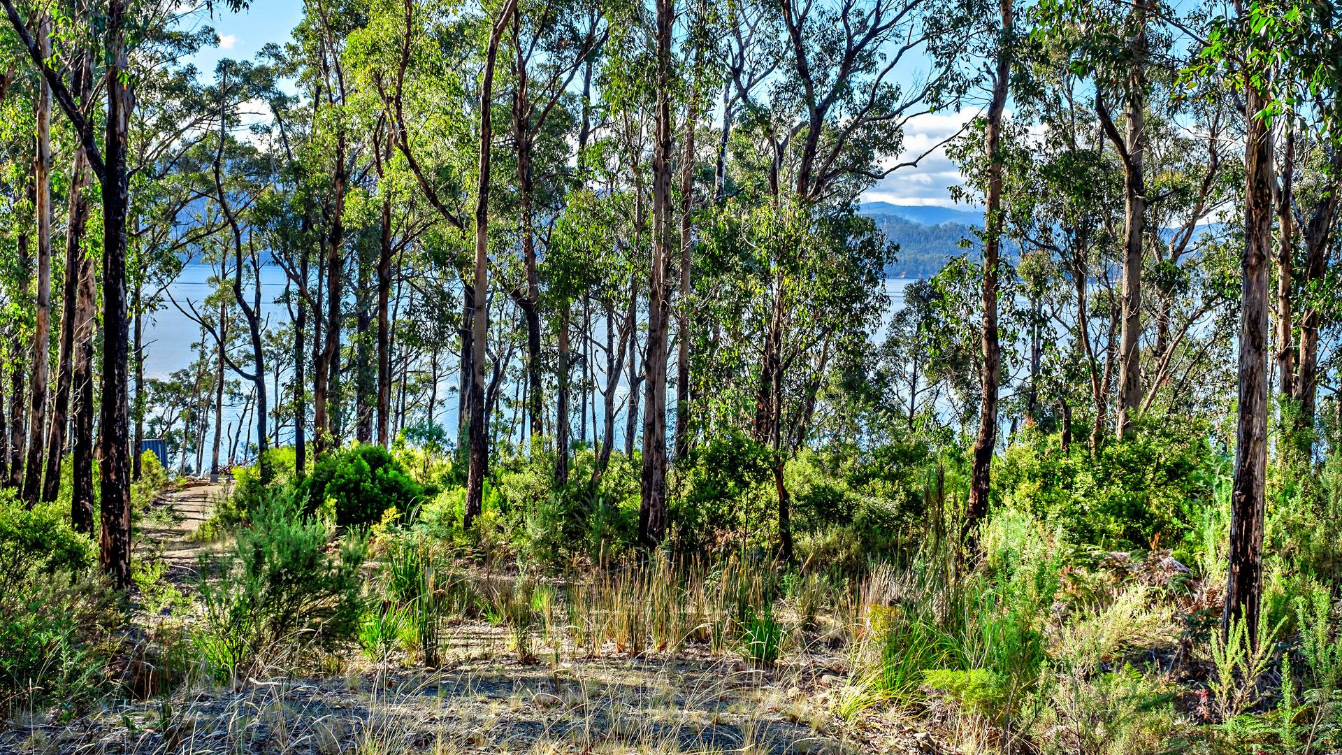 Lot 3 Esperance Coast Road, Brooks Bay TAS 7116, Image 2