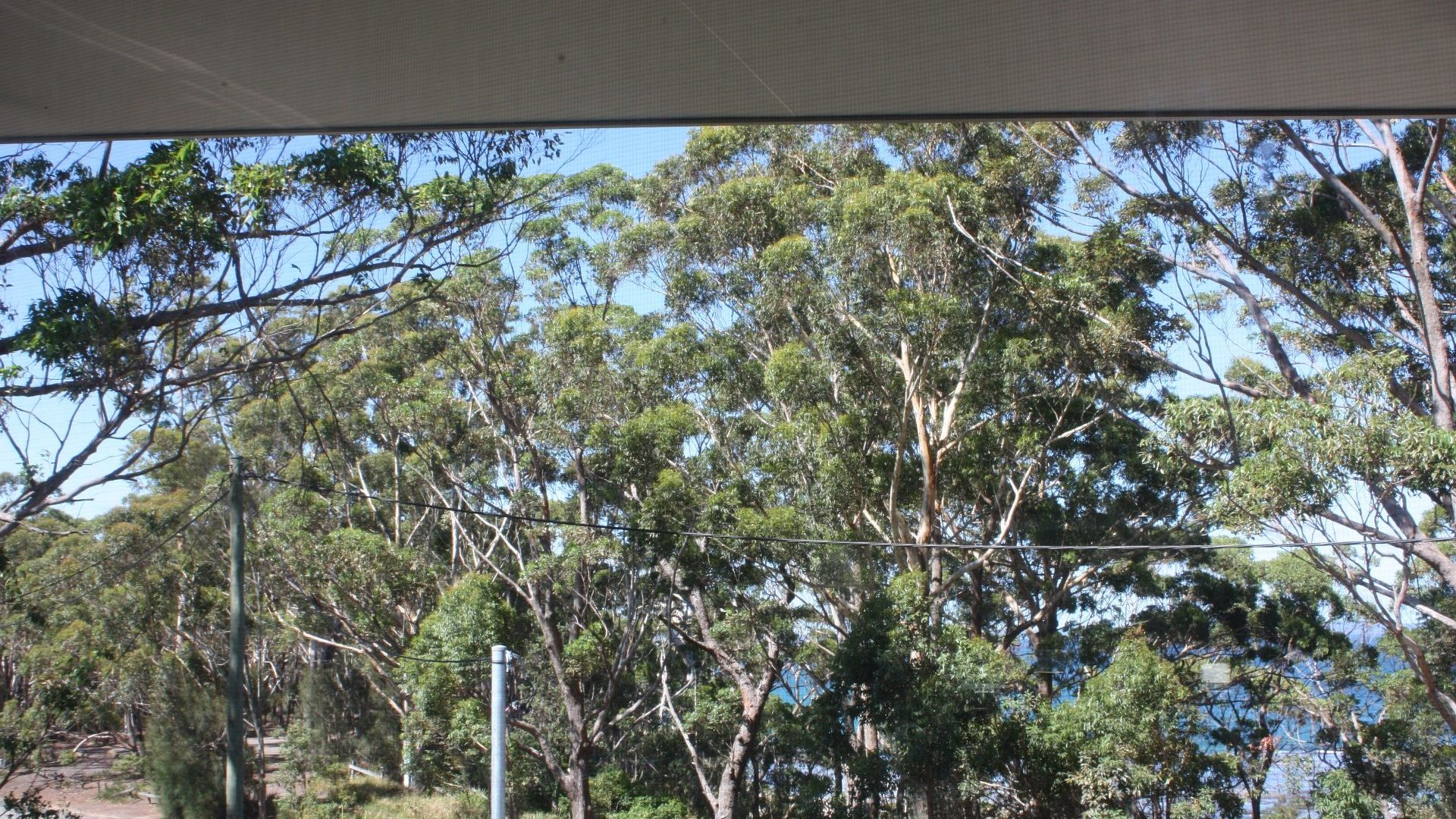 15 Holly St, Bendalong NSW 2539, Image 1