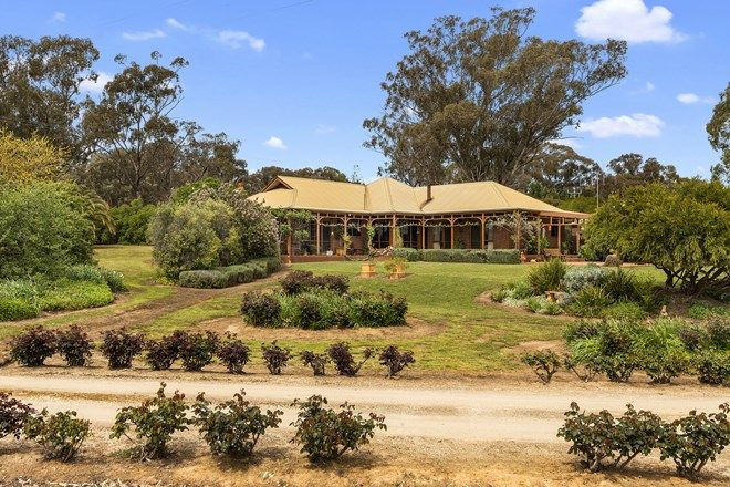Picture of 242 Nankervis Road, MANDURANG VIC 3551