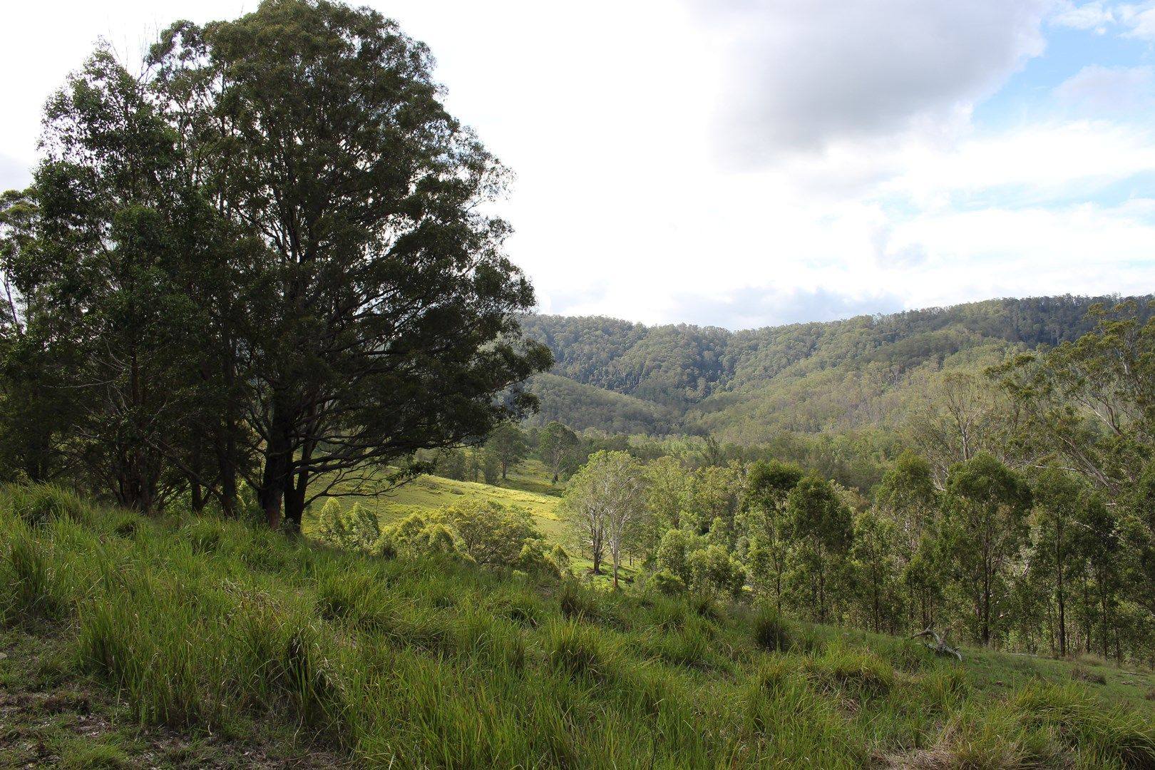 Lot 117 Bowman River Road, Gloucester NSW 2422, Image 0
