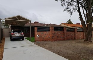 Picture of 14 Currawong Way, Thornlie WA 6108