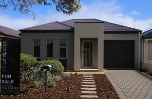 Picture of 49A Dumfries Avenue, Northfield SA 5085