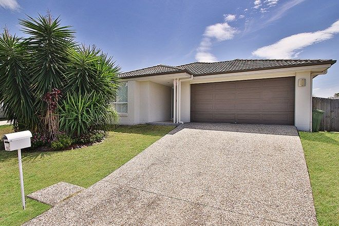 Picture of 7 Earlwood Court, RACEVIEW QLD 4305