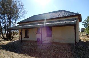 Picture of 5 Warner Rd, Belalie North SA 5491
