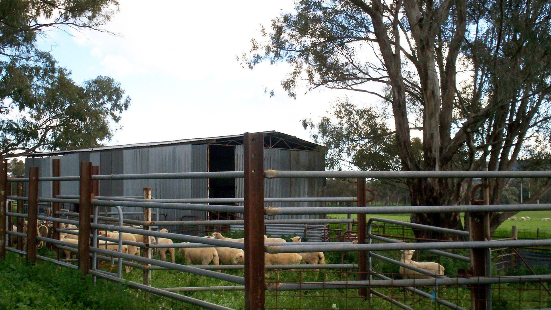 57 Mahers, Cookardinia NSW 2650, Image 1