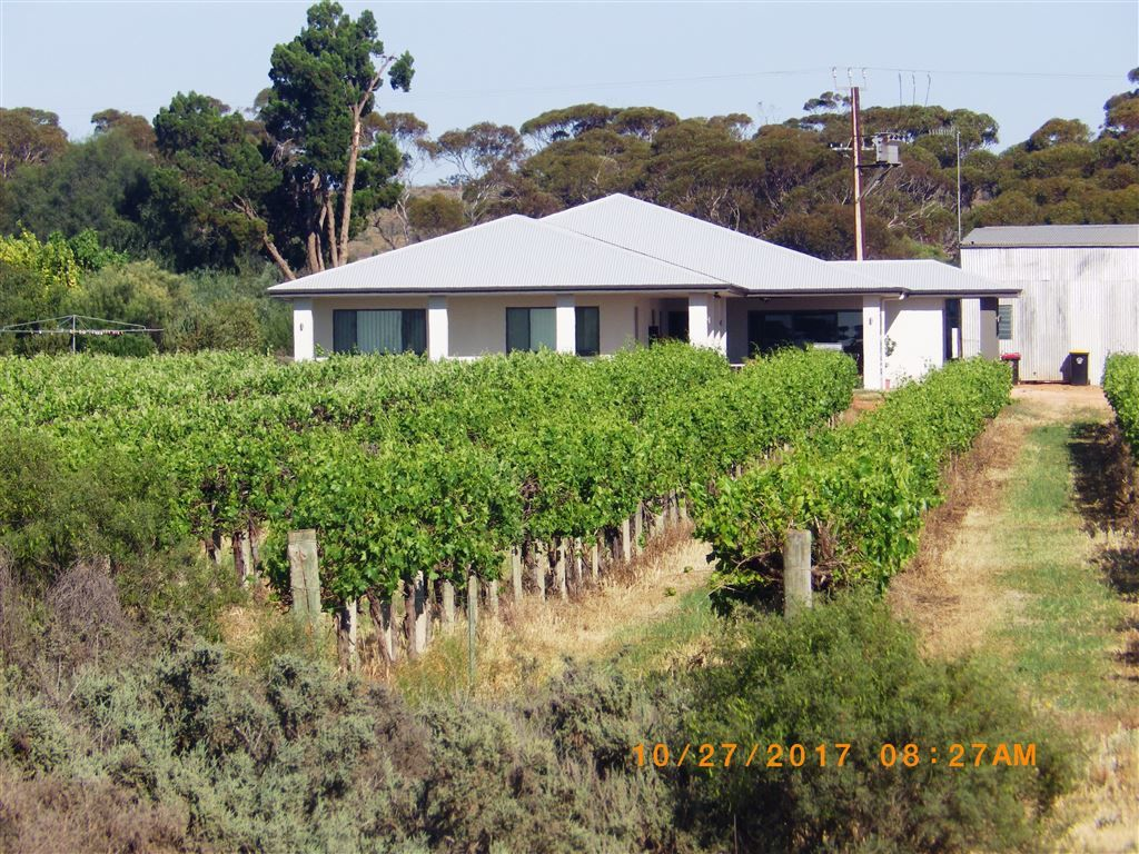 784A Government Road, Renmark West SA 5341, Image 1