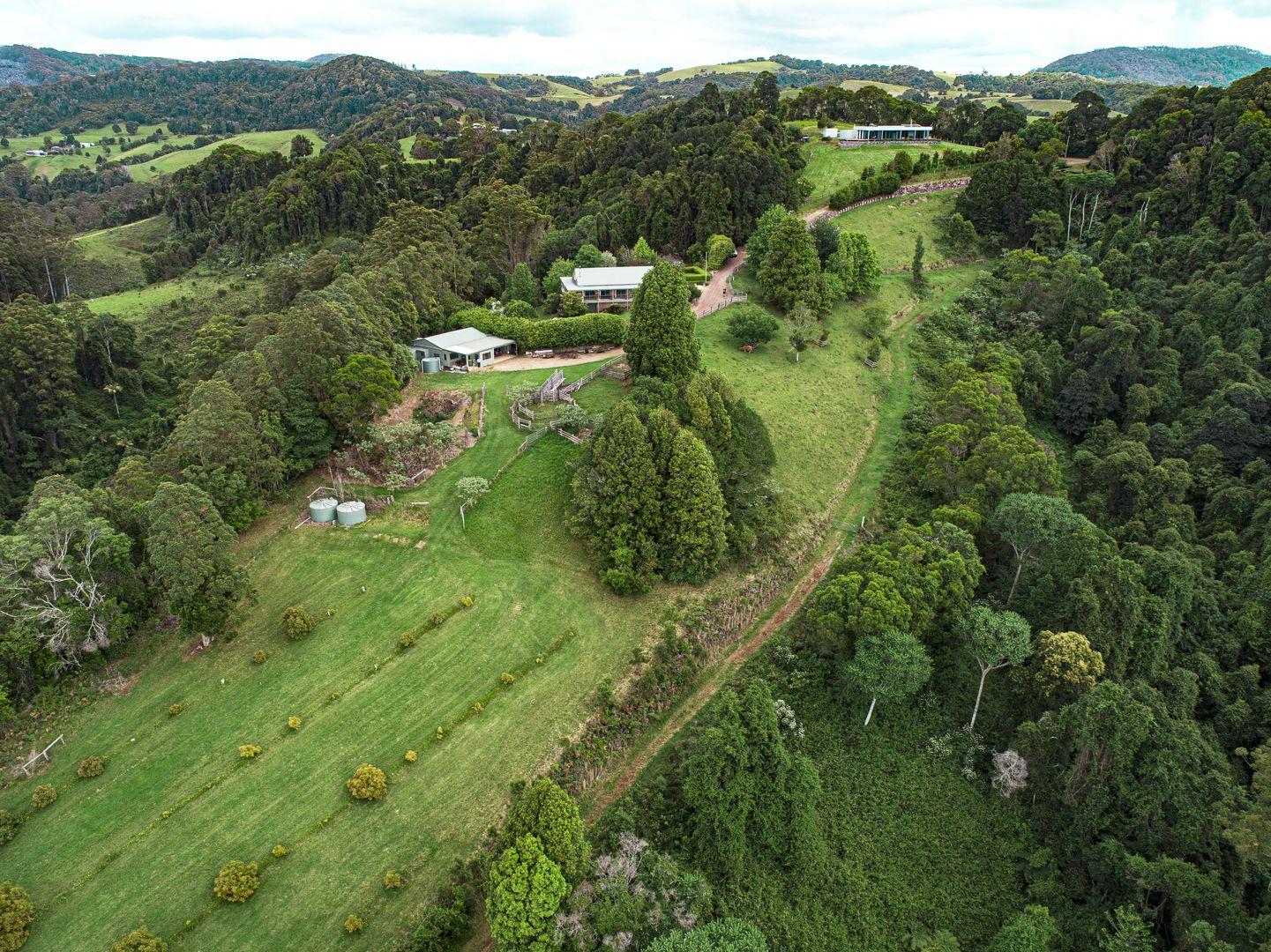 1528 Koppin yarratt Road, Comboyne NSW 2429, Image 2