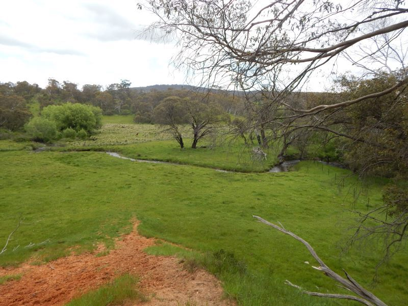 Lot 111 Bugtown Road, Adaminaby NSW 2629, Image 2