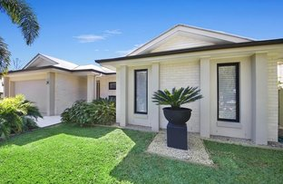 Picture of 10 Paynters Pocket Ave, Palmwoods QLD 4555