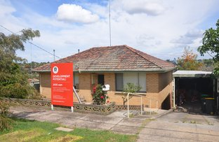Picture of Pascoe Vale VIC 3044