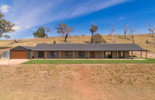 Picture of 338 Sandy Creek Road, Molong NSW 2866