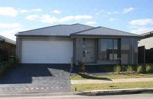 Lot 5526 Kale Road, Spring Farm NSW 2570